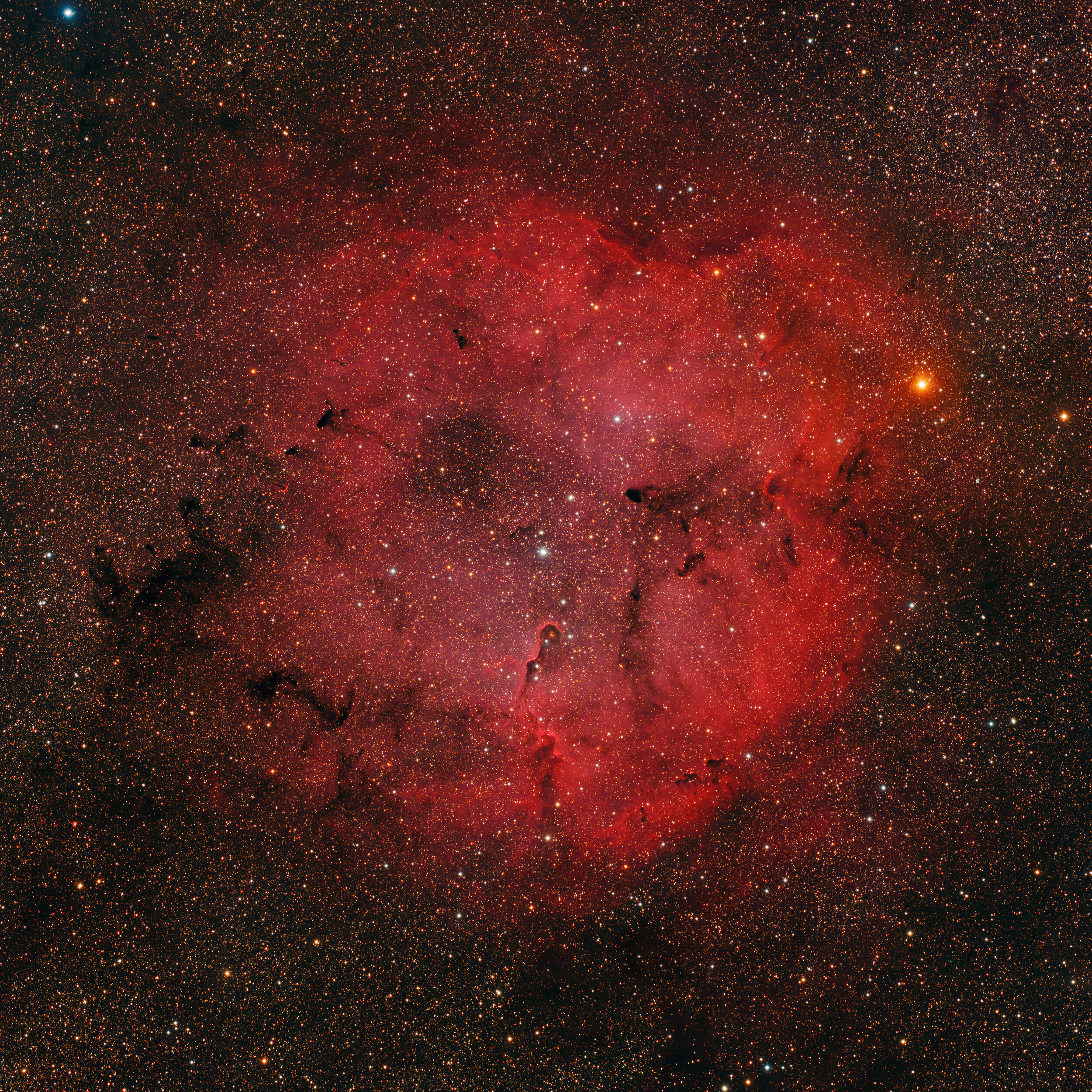 IC 1396 in Cepheus Astrophotography Martin Rusterholz