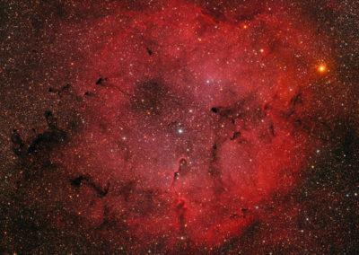 IC 1396 in Cepheus