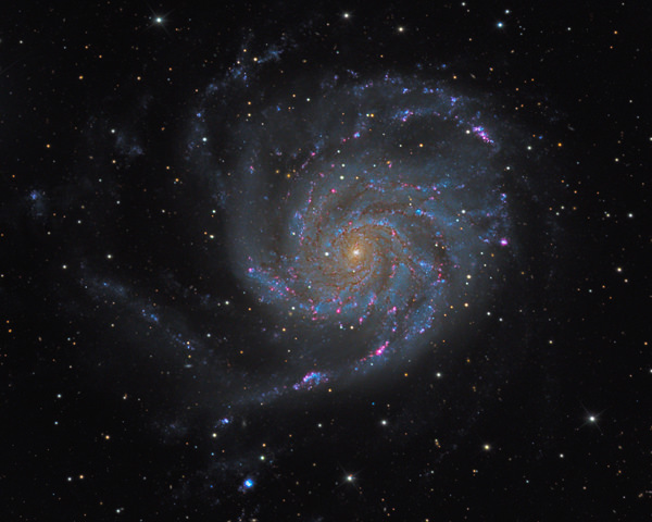 M101 Pin­wheel Galaxy in Ursa Major