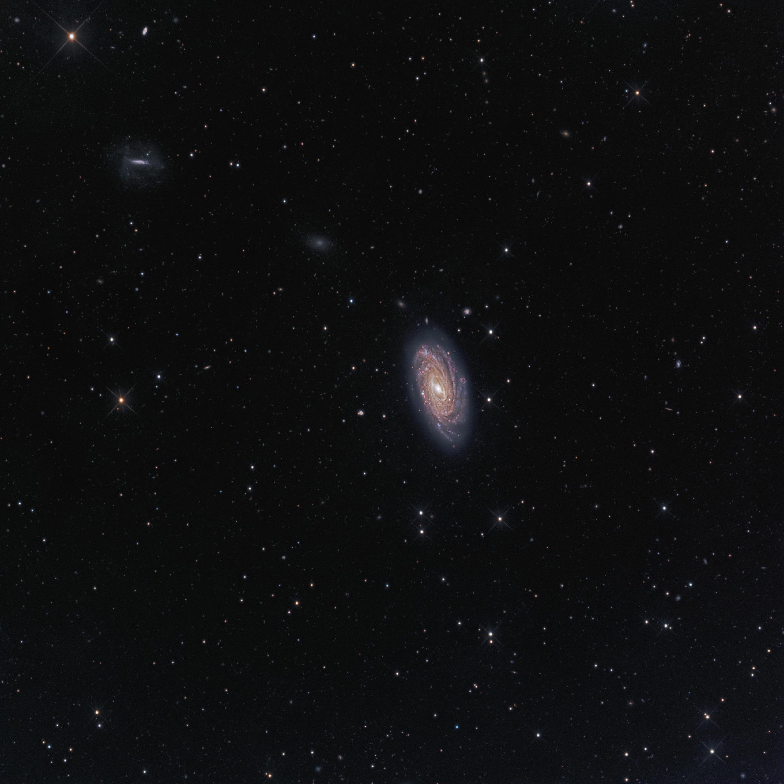 NGC 3953 Galaxy Astrophotography Martin Rusterholz