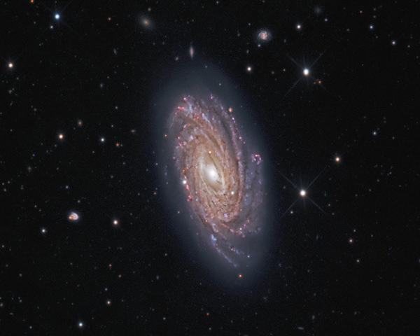 NGC 3953  in Ursa Major
